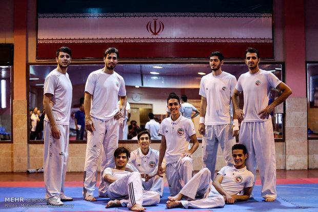 Iran ranks 3rd in 2017 World Taekwondo Champs.