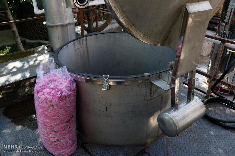 افتتاح کارخانه گلاب گیری در بردسیر کرمان