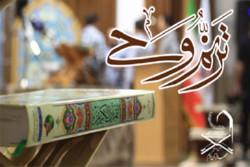 راه یابی ۱۲۸ حافظ کل قرآن به مرحله کشوری آزمون «ترنم وحی»
