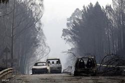 آتش سوزی در جنگل های پرتغال