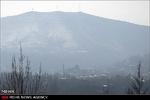 افزایش مرگ ناشی از آسم در ایرانیان بالای ۵۰ سال