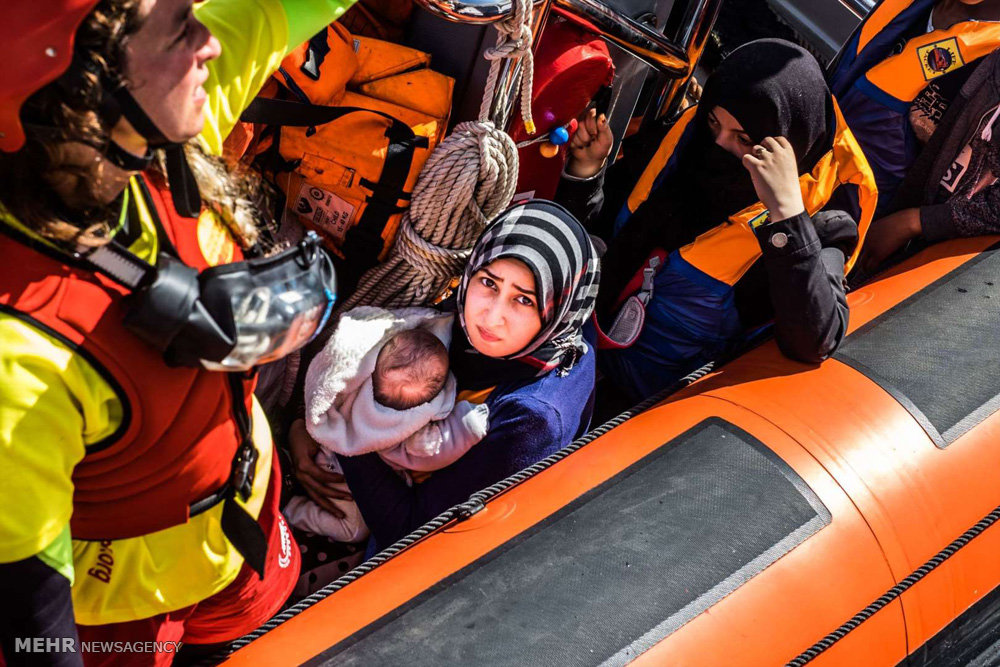 پناهجویان در کشورهای مختلف