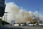 اطفاء آتش عمدی ۱۵ هکتار از نیزارهای قرچک/دودی که به چشم مردم رفت