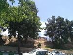 آتش سوزی در پارک میدان لشکر کرمانشاه / مهار کامل آتش