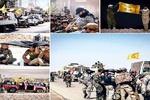حركة النجباء تتقدم باتجاه البوكمال على الحدود العراقية السورية + صور