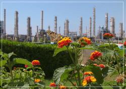حامی تکمیل طرحهای توسعه ای هستیم/افزایش تولیدباافزایش صادرات