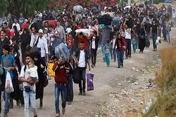دستگیری پنج تروریست انتحاری در مرز ترکیه با سوریه