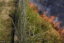 دسترنج ۴۰ گندم کار گلستانی در آتش سوخت