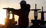 پنج علت کاهش قیمت نفت