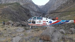 واژگونی پژو ۲۰۶ در پردیس ۵ مصدوم داشت