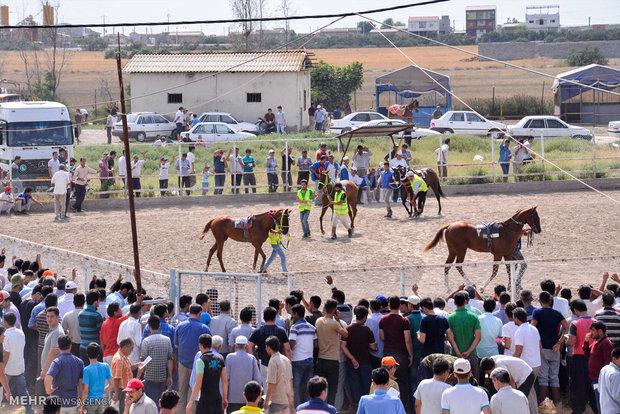 Summer horse racing in Bandar Torkaman