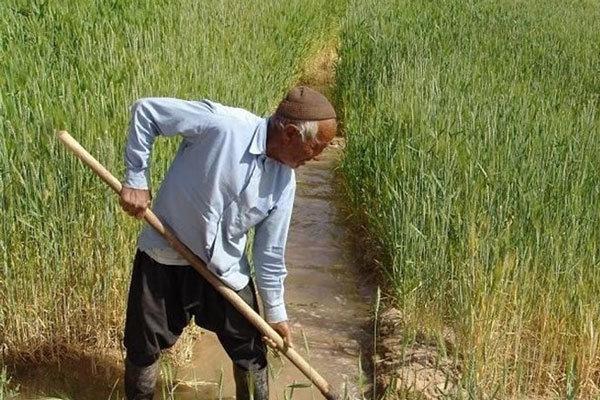 ۲۳ میلیون نفر تحت پوشش صندوق بیمه اجتماعی کشاورزان هستند