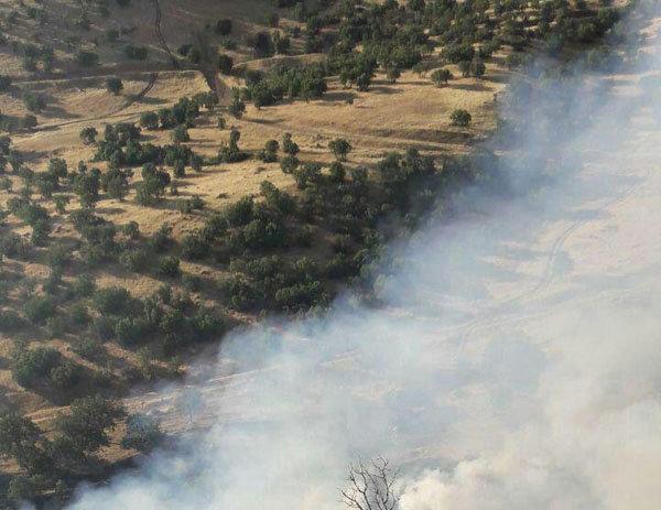 «تفرجگاه سردره» شهرستان پاوه استان کرمانشاه در آتش سوخت
