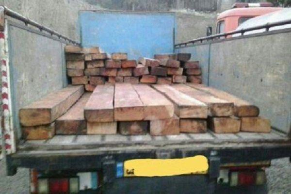 ۴ تُن چوب آلات قاچاق در املش کشف و ضبط شد