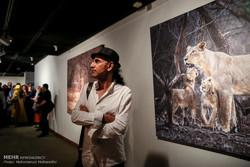 نمایش فیلم «زمستان در چهار راه» و سخنرانی درباره شیر ایرانی
