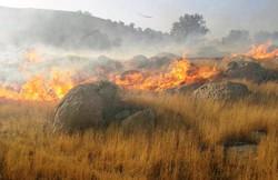 آتش سوزی جنگل در کهگیلویه و بویراحمد