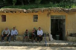 آوای روستا