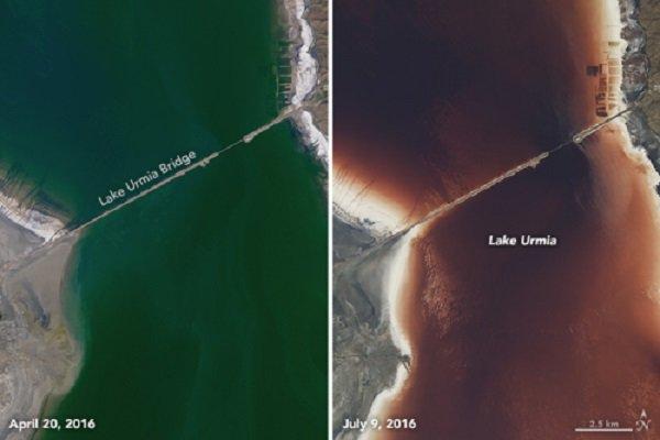 2504154 - روایتی از واقعیت تا شایعه؛ خونِ دلِ دریاچه ارومیه به رخسار نشست