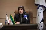 ۲۵ درصد جمعیت روستایی  استان زنجان ۲ دفترچه بیمه دارند