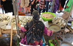 مراکز عرضه و توزیع آبزیان در شهرستان بندرعباس ساماندهی می شود