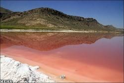 دریاچه مهارلو قرمز شد/ کم آبی و آلودگی عامل اصلی