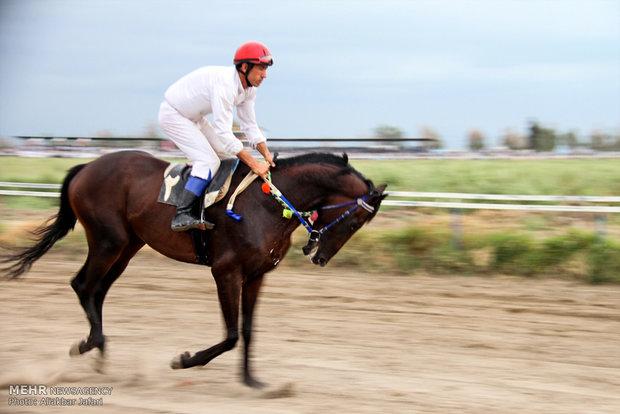 Horse racing in Bandar Torkaman