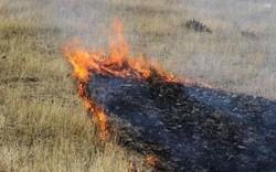 آتش سوزی اراضی روستای پرور مهدیشهر مهار شد