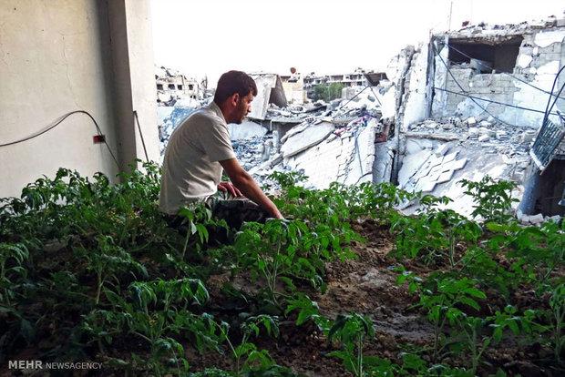 زندگی روزمره در مناطق جنگی سوریه