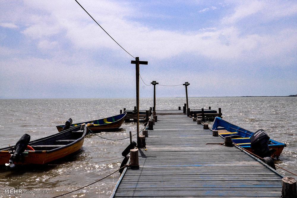 وضعیت بحرانی خلیج گرگان
