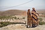 امنیت غذایی در ایران پایدار نیست/چالشهای تامین غذا و خشکسالی