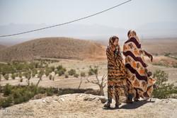 عشرون عاما من الجفاف يثقل كاهل بادية خراسان الجنوبية /صور