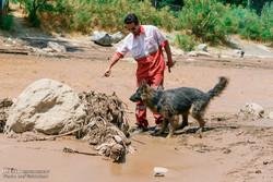 عملیات جستجوی مفقودی سیل روستای «اَغشت» ادامه دارد