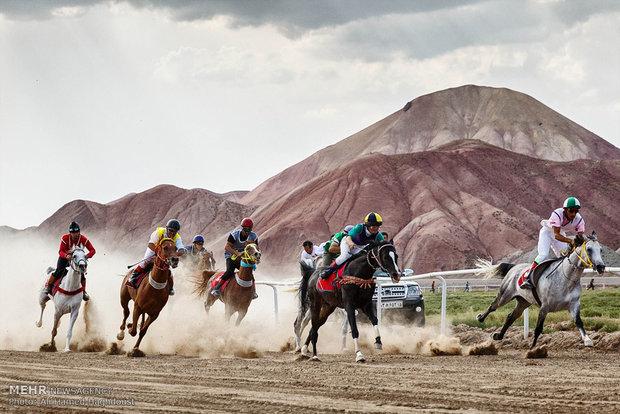 سباقات الفروسية في محافظة آذربايجان الشرقية