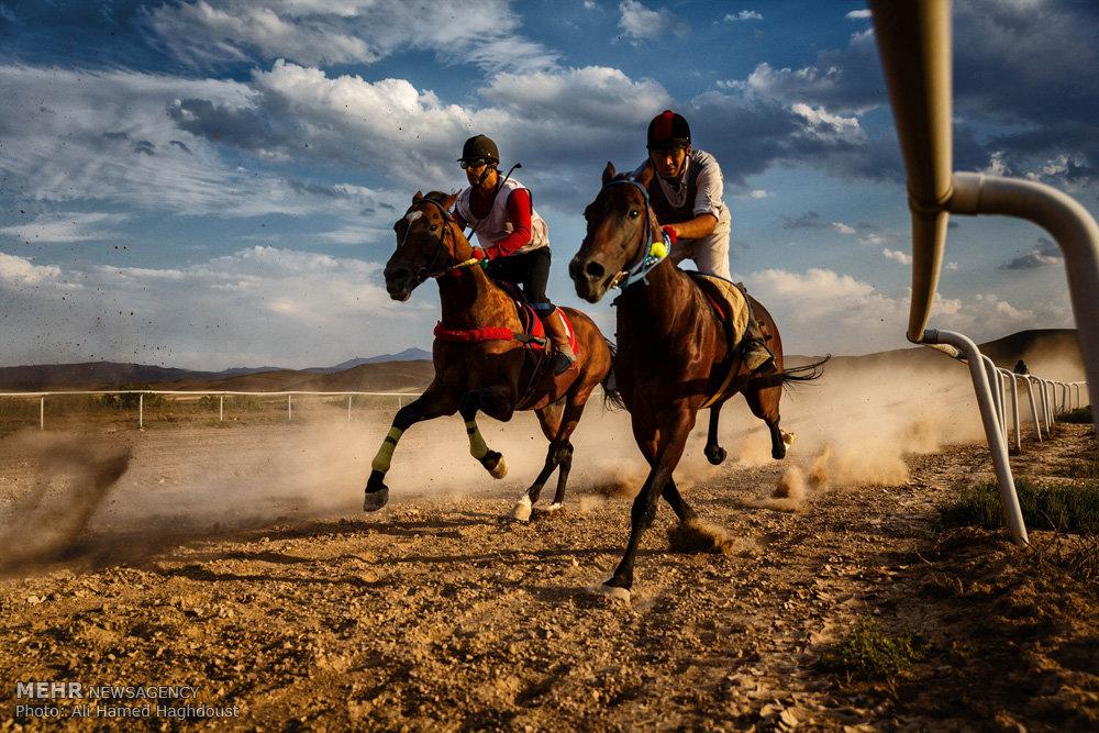 کورس اسب دوانی آذربایجان شرقی