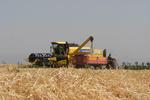 کشاورزان برای خرید ادوات وام با سود ۴ تا ٦ درصد میگیرند