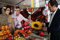 İran'da kiraz festivali