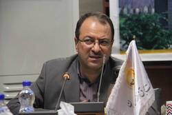 عادل کاظمی مدیر عامل شرکت توزیع نیروی برق تبریز
