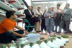 انتخاب مریوان بهعنوان شهر جهانی کلاش شایسته مردم منطقه بود