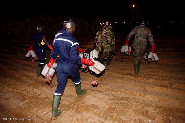 شکار کروکودیل در ساحل عاج