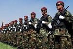 ۱۳۰ نظامی افغانستانی تسلیم طالبان شدند