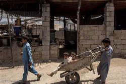 بازگشت خانواده های آواره افغان به خانه