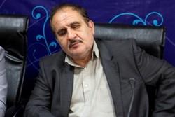 محمدرضا مظلومی