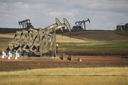 قیمت نفت با امید به افزایش تقاضا  تقویت شد