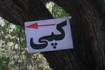 شهر درمحاصره نمادهای نازیبا/ جاذبههای تبریز زیر زوائد بصری دفن شد