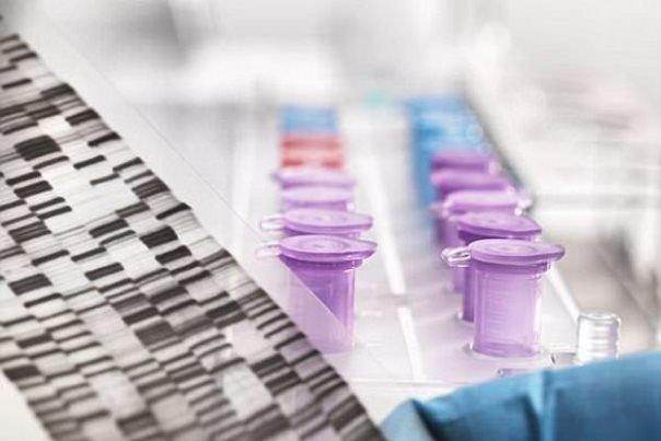 حذف بیماری وراثتی در نطفه آزمایشگاهی ممکن شد