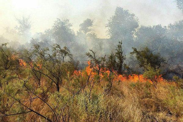 مراتع و جنگلهای منطقه چالل شهرستان دنا دچار آتش سوزی شد