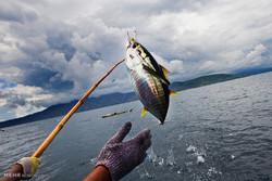 ۲ صیاد غیرمجاز ماهی در دره شهر دستگیر شدند