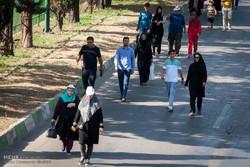 شیوع ۲۰ درصدی آرتروز زانو در جامعه ایرانی