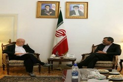 Head of IOS RAS meets with deputy Iranian FM