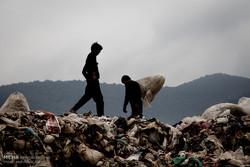 پیگیری موضوع بریده شدن گوش کودک زبالهگرد/ هنوز کودک کار پیدا نشده است